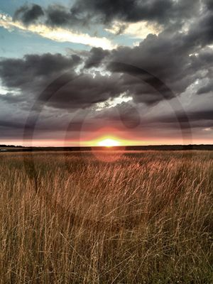 Sunset Blakeney Norfolk2.jpg